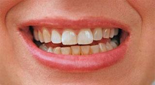 newtown dentists